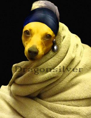 Fotoshooting Haustiere mit anschließender Bild-Bearbeitung , Leinwanddruck Homeage Mädchen mit Perlenohrring
