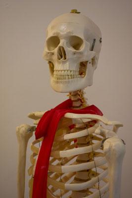 Osteopathie Schwabing