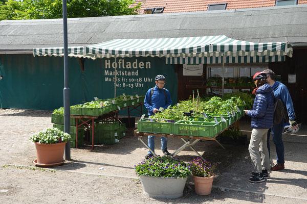 Hofverkauf Domäne Dahlem