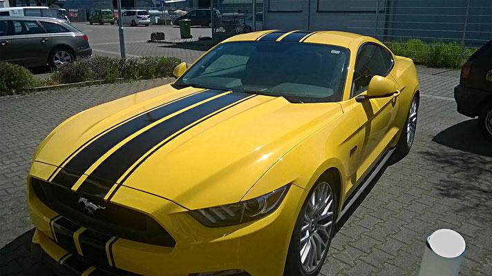 Ford Mustang Teilfolierung Rennstreifen - MT Concepts Eppelheim