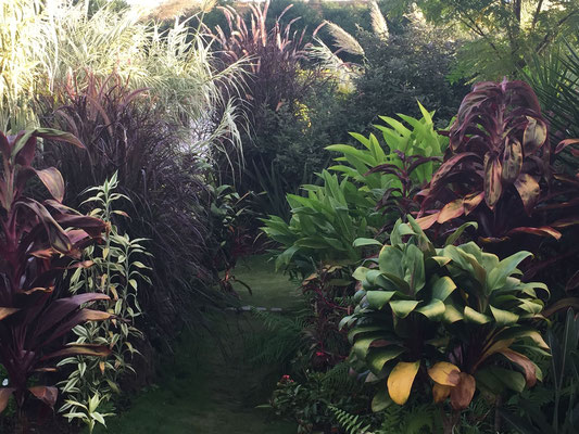Jardin tropical I Folies tropicales © Rc-Paysage
