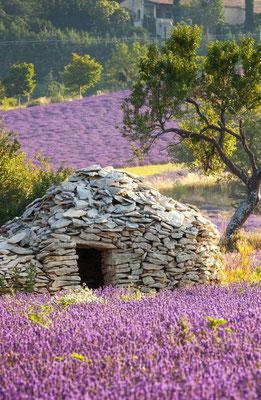 Borie en Provence © DR