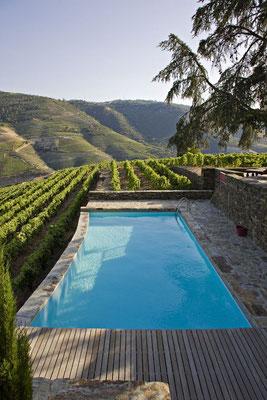 Piscine au sein d'un domaine viticole © DR