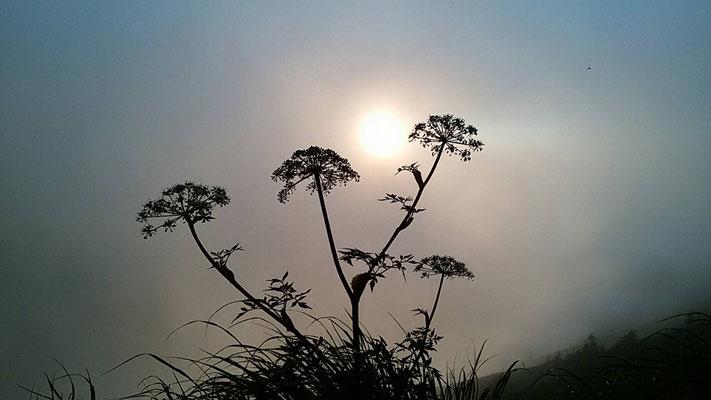 五竜岳の沈む夕日