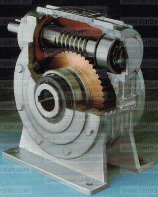 Pedir sustitución reductor y motor Echesa.