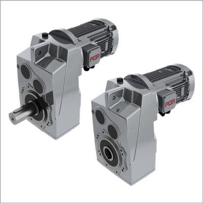 Moto-reductor PGR