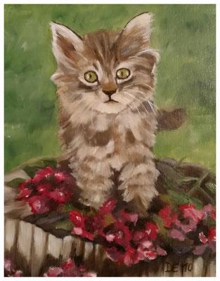 """Kätzchen""  24 x 30 cm"