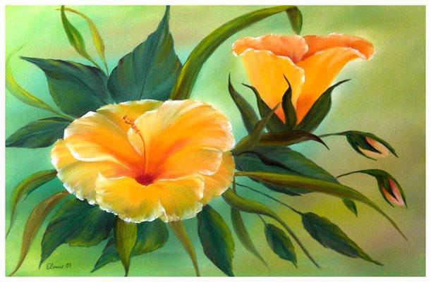 """""""Hibiskus""""  40 x 60 cm (verschenkt)"""