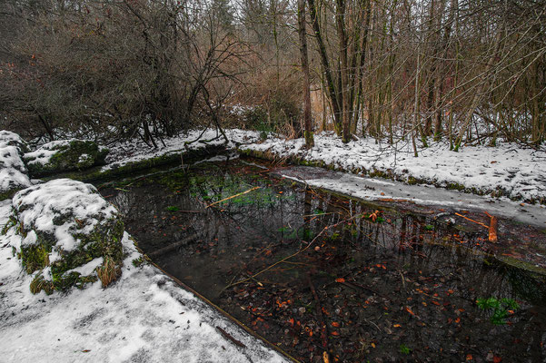 Ice free pond even during the coldest periods of the year!