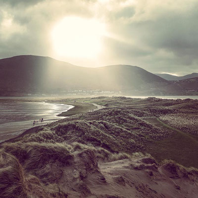 In the dunes of Rossbeigh Beach
