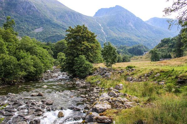 Der Weg zum Hattebergfossen führt über Wiesen am Fluss entlang...