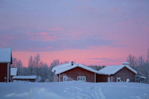 Dieses Bild ist unbearbeitet! Der Himmel war knall-rosa! :-)