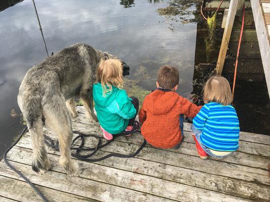 Am Steg sind alle (inklusive Hund) total interessiert, was wohl im Kescher landet...