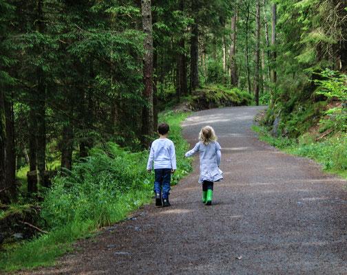 Los geht's: ab in den Märchenwald.