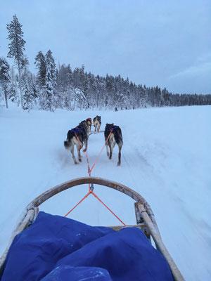 Die Huskytour führt uns vorbei an zugefrorenen Seen...