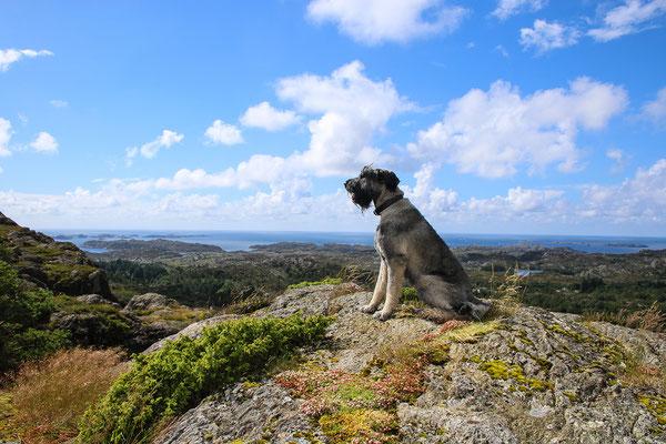 ... nach dem steilen Aufstieg die erste schöne Aussicht!