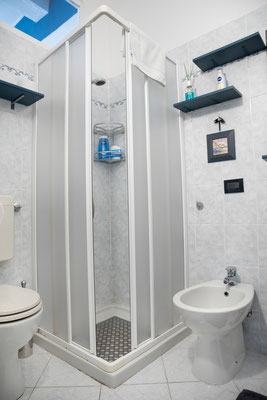 Bathroom - Shower, WC and bidet