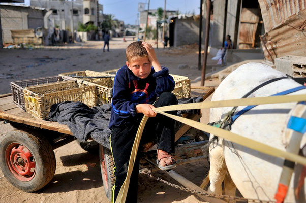Fighting child labor after the war in Gaza -  Palestine © François Struzik - simply human 2015