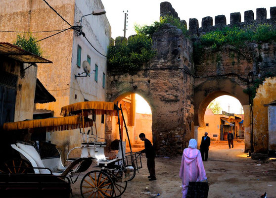 Meknès a UNESCO world heritage medina - © François Struzik - simply human 2009 - Morocco - Bab Lahjar