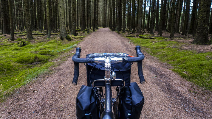 Cycling coast to coast - England, United Kingdom  © François Struzik - simply human 2018- Kielder Forest