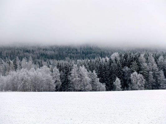 Winter in Dalsland - Sweden - © François Struzik - simply human 2015