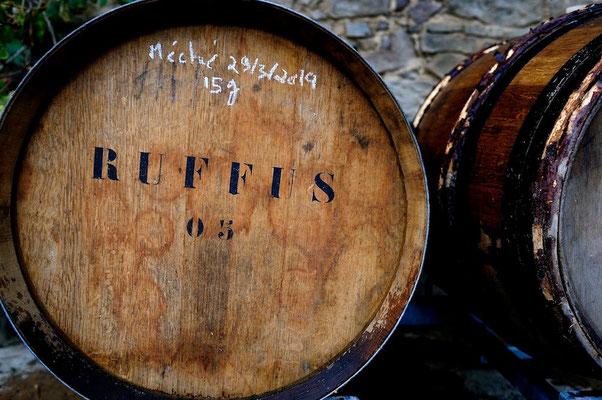Ruffus vineyard - Belgium © François Struzik - simply human 2013-14