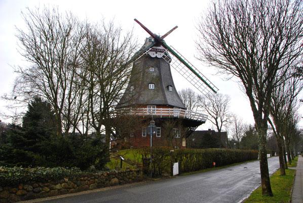 Wyker Windmühle