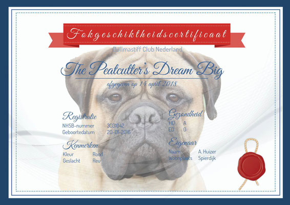 certification Bullmastiff Club Nederland