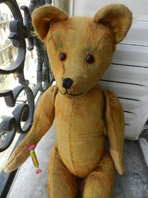 Réparation d'ours et de poupées, anciens e contemporains