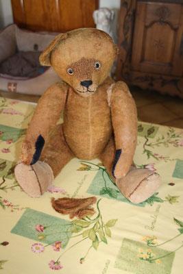 Clinique pour ours en peluche anciens et contemporains