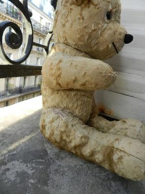 réparer ours anciens et contemporain