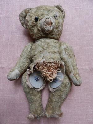 Réparation, restauration d'un petit ours français en très mauvais état - avant son opération