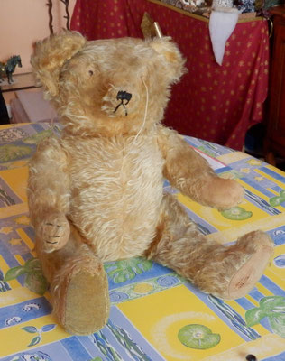 La Clinique des ours et des poupées d'Eric Giovannini