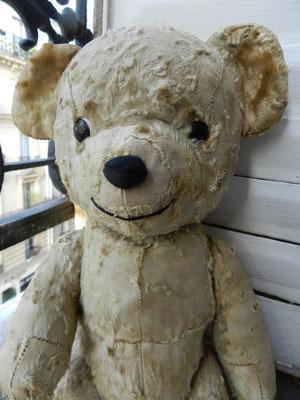 clinique ours anciens et contemporain