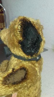 Ours brûlé par une lampe à acétylène