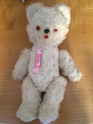 Pinpin une fois opéré à la Clinique des ours et des poupées d'Eric Giovannini