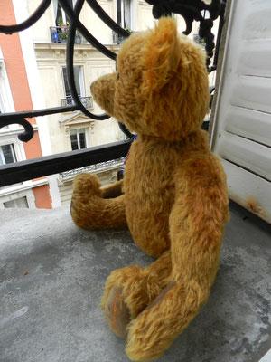 Nounours opéré à la Clinique pour ours et poupées d'Eric Giovannini
