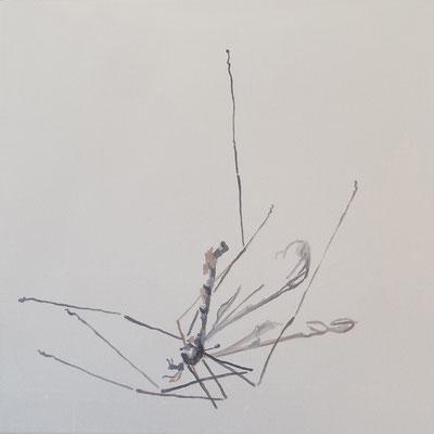 o.T.,#11, 35 cm x 35 cm, Tempera/LW, 2018
