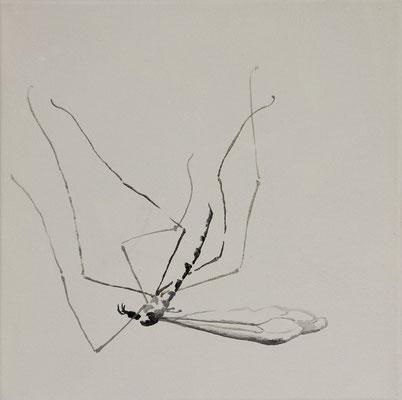o.T. #5, 35 cm x 35 cm, Tempera/LW, 2011