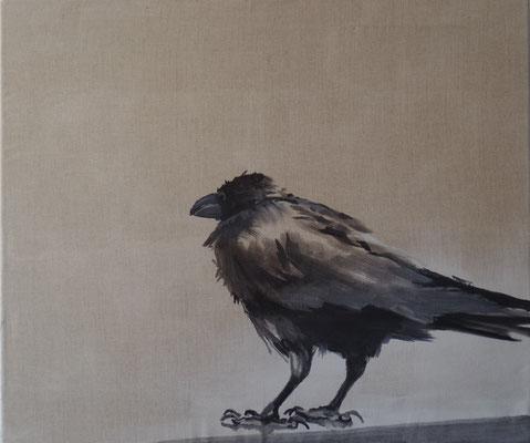 crow#12, 55 x 65 cm, Tempera/LW, 2017,