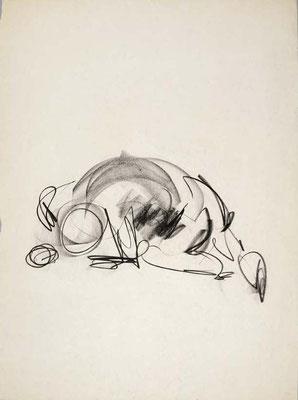 #106, fusain sur papier,  45 x 61 cm- Charcoal on paper, 18 x 24