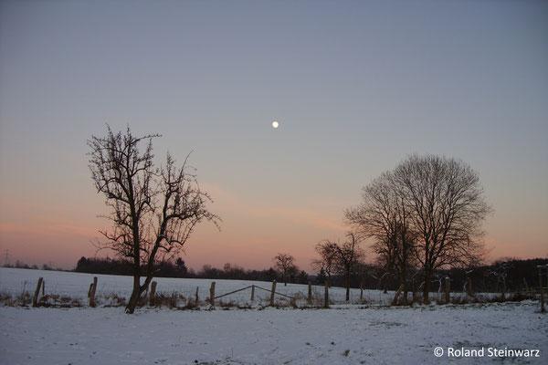 Wintermond, Fernegierscheid