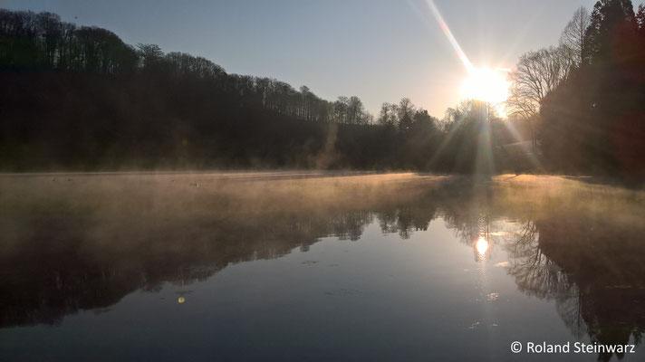 Morgennebel über den Herrnsteiner Teichen