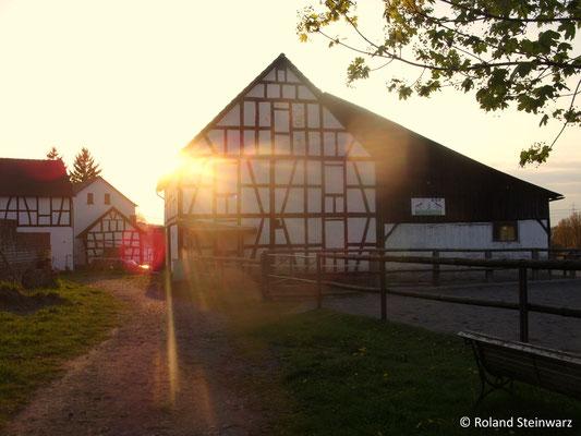 Sonnenuntergang in Fernegierscheid