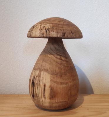 Pilz aus Eiche mit schönem Farbspiel