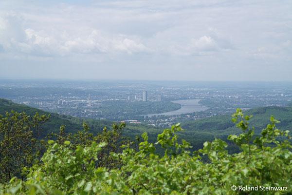 Ausblick vom Ölberg auf Bonn
