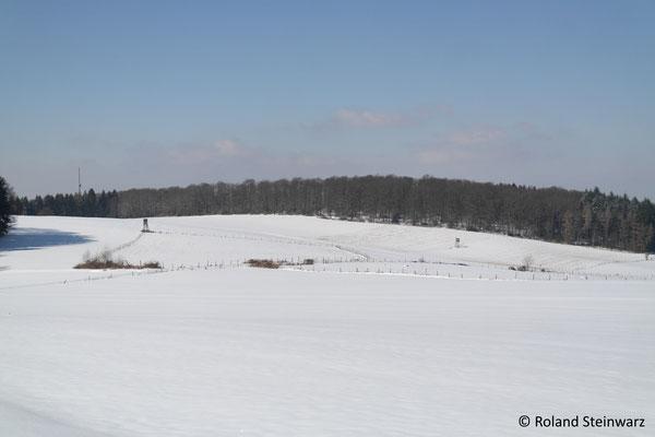 Winterlandschaft bei Kocherscheid