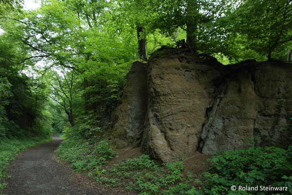 Tuff-Felsen im Nachtigallental