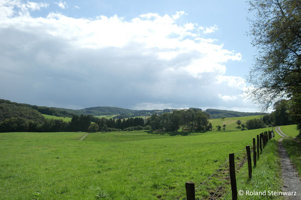 Hügellandschaft bei Irsen