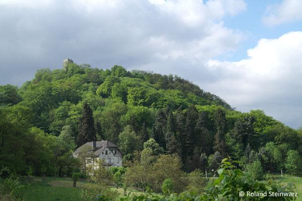 """Der """"Burghof"""" unterhalb des Drachenfels"""